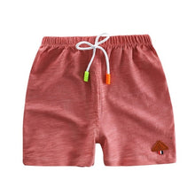Load image into Gallery viewer, Summer Flamingos Shorts