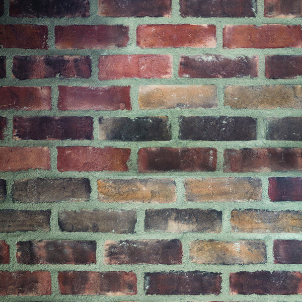 Big Brick Photo Backdrop