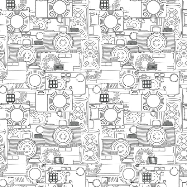 B&W Camera Photo Background