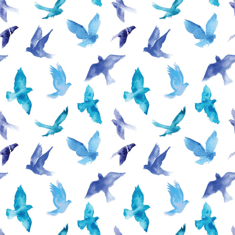 Blue Bird Photo Background