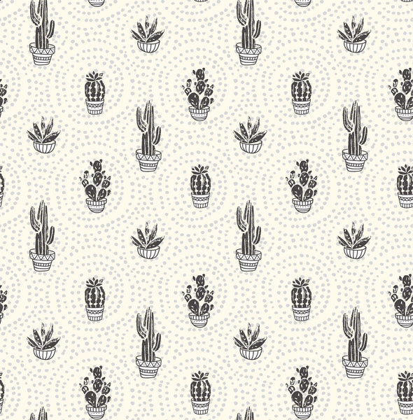 Cacti Photo Backdrop