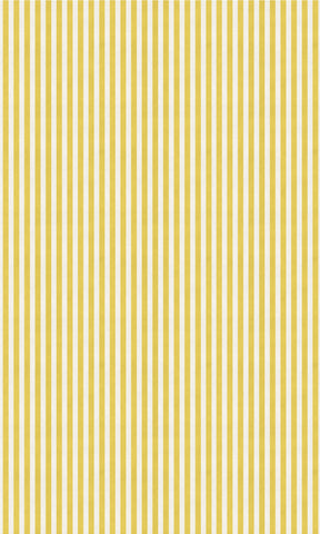Candy Striped Gold Photo Backdrop
