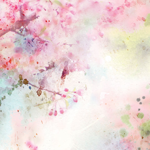 Cherry Blossom Photo Backdrop