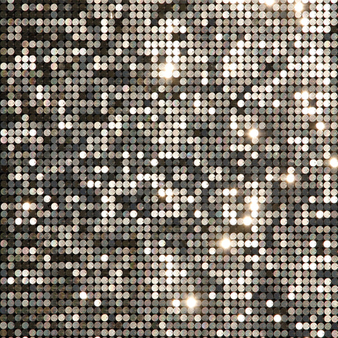 Disco Sheet Photo Backdrop