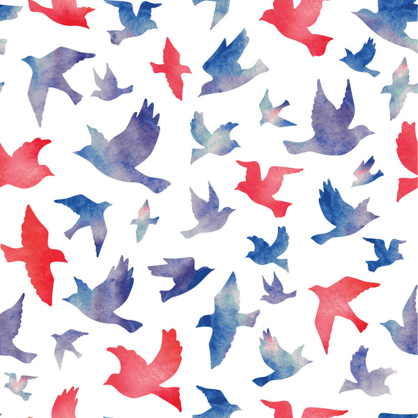Free Bird Photo Background