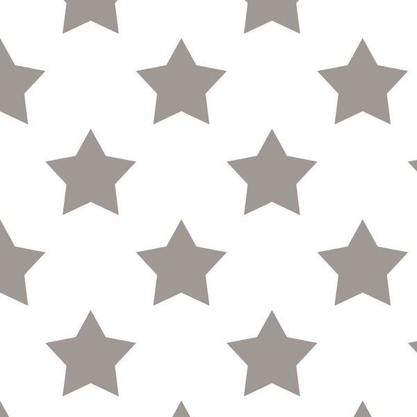 Grey Stars on White Photo Background