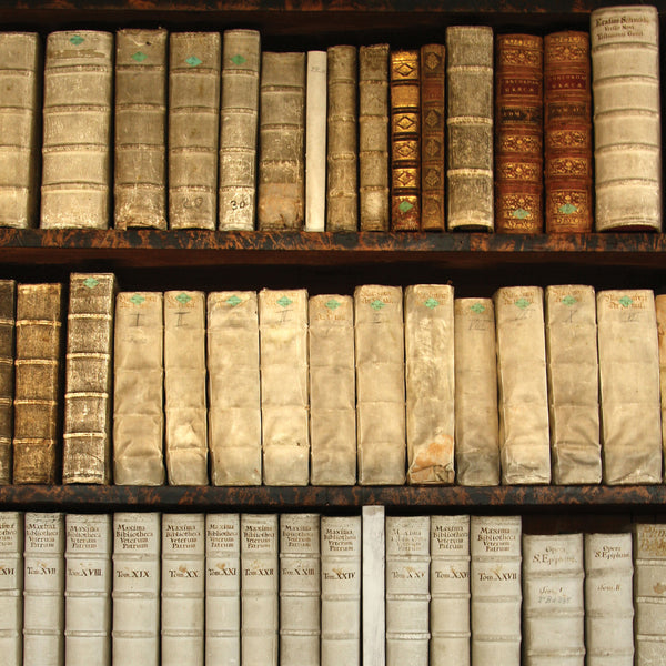 Old Books Photo Backdrop