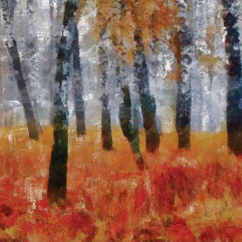 Painted Aspen Backdrop