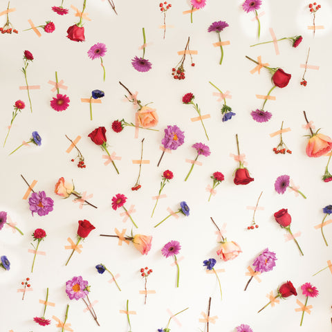 Petal Pushers Photo Background