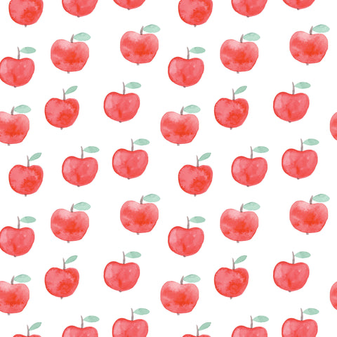 Clearance Red Apples Photo Backdrop