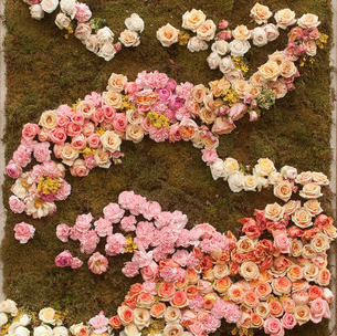 Rose Garden Photo Backdrop