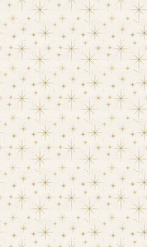 Star of Wonder Photo Backdrop