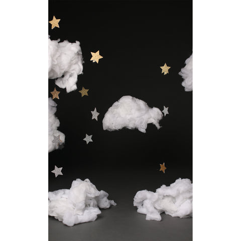 Starry Night Photo Backdrop *NEW