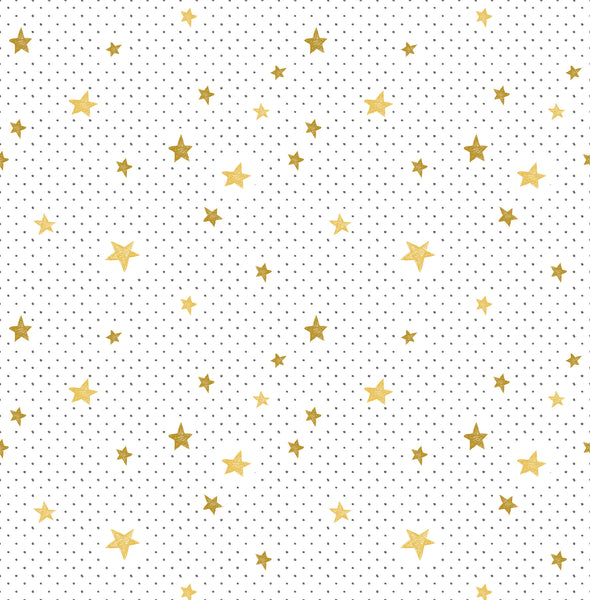 Stars and Dots Photo Backdrop