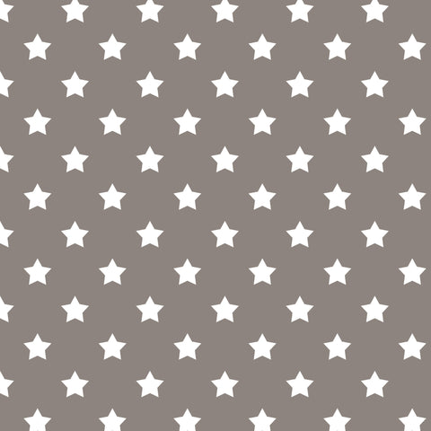 White Stars on Grey Photo Background