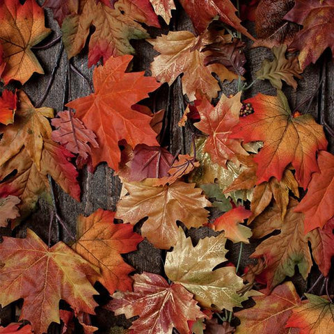 Clearance Fall Leaves Photo Backdrop