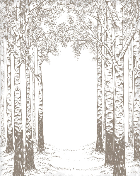 Hand Drawn Woods Photo Backdrop