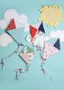 Kites Red & Pink Photo Background