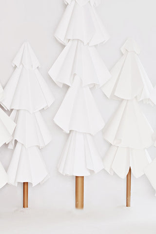 White Trees Photo Backdrop