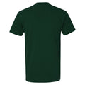Distressed Circle Logo Michigan State Next Level Premium Short Sleeve T Shirt - Forest