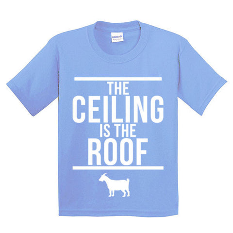 The Ceiling Is The Roof Youth - C Blue