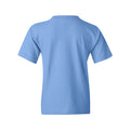 The Ceiling Is The Roof Youth Tee - Carolina Blue