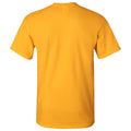 University of Iowa Hawkeyes Arch Logo Football Short Sleeve T Shirt - Gold