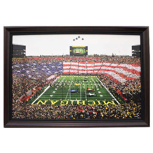 American Flag Framed Canvas 17x26