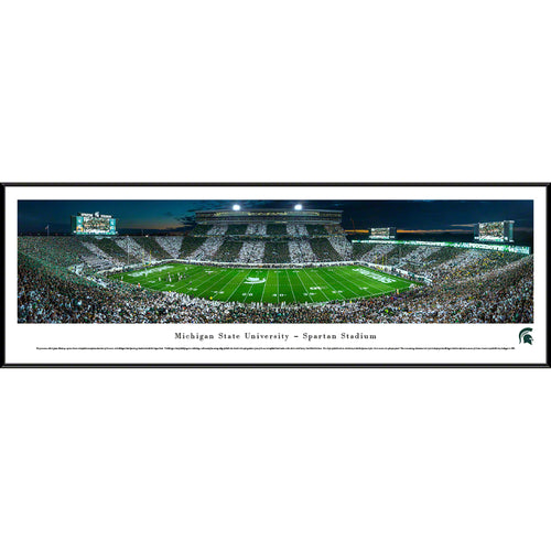 Michigan State University Spartans Football Spartan Stadium Stripe Panorama - Standard Frame