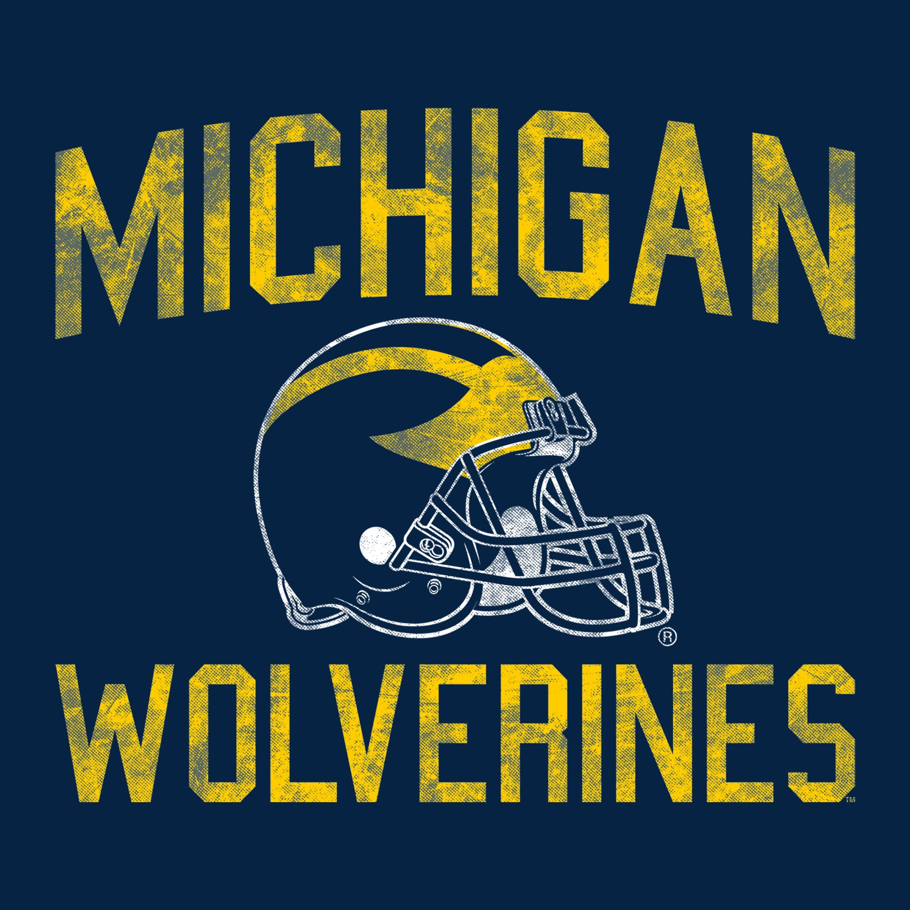 13+ Michigan Wolverines
