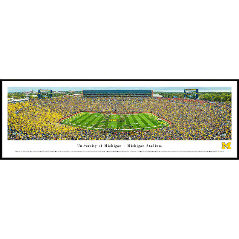 University of Michigan Wolverines Football - 50 Yard Line - Standard Frame