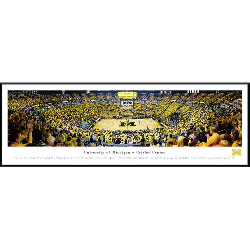 University of Michigan Wolverine Basketball - Standard Frame