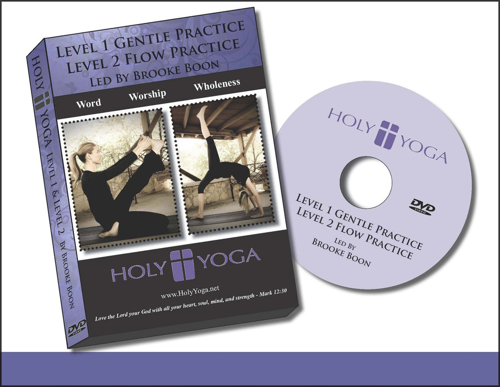 Level 1 Gentle and Level 2 Flow DVD
