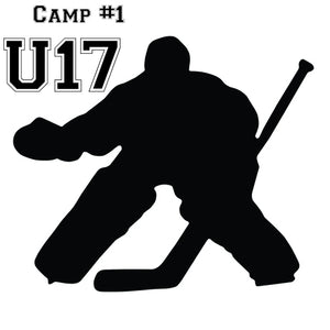 U17 Aug.22/23 Co-Ed off-ice Dangler Academy 2:30pm-3:15pm Tudor Glen Field house, Servus Place + On-ice Power Skating GO AUTO Arena 4:30pm-5:30pm