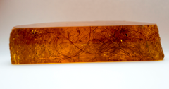 Woolly Mammoth Hair in Amber