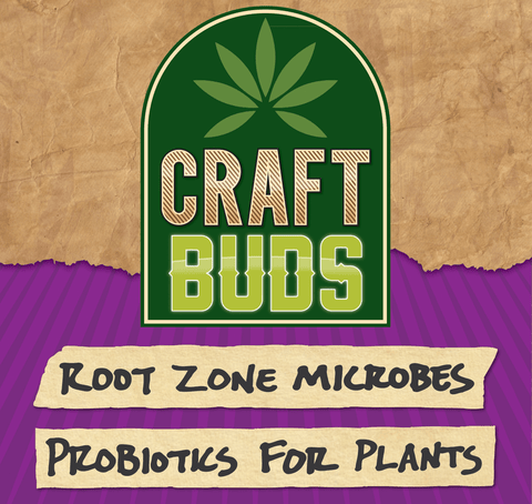 Root-Zone Microbes: Probiotic for Plants