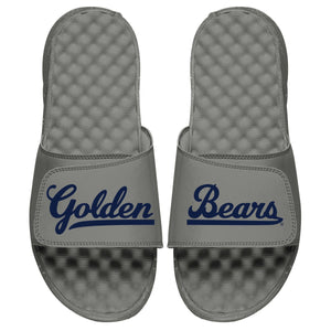 Cal Golden Bears Slides