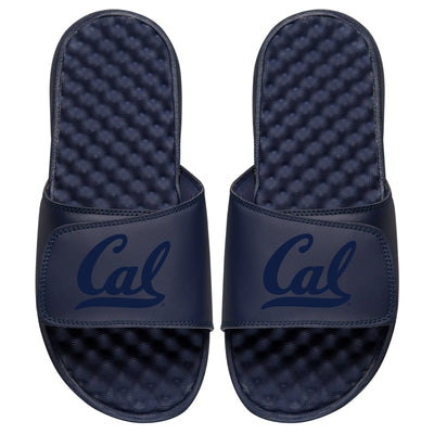 Cal Primary Tonal Slides