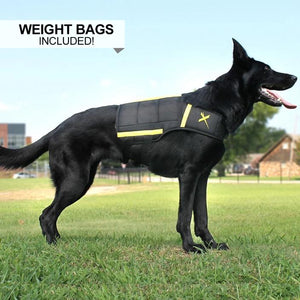 XDOG Weight Vest for Dogs