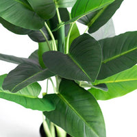 Calla Lily 90cm - ARTIFICIAL PLANTS