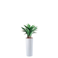 Cardin B Fiberglass Pot 35cm x 80cm With Artificial Agave 90cm