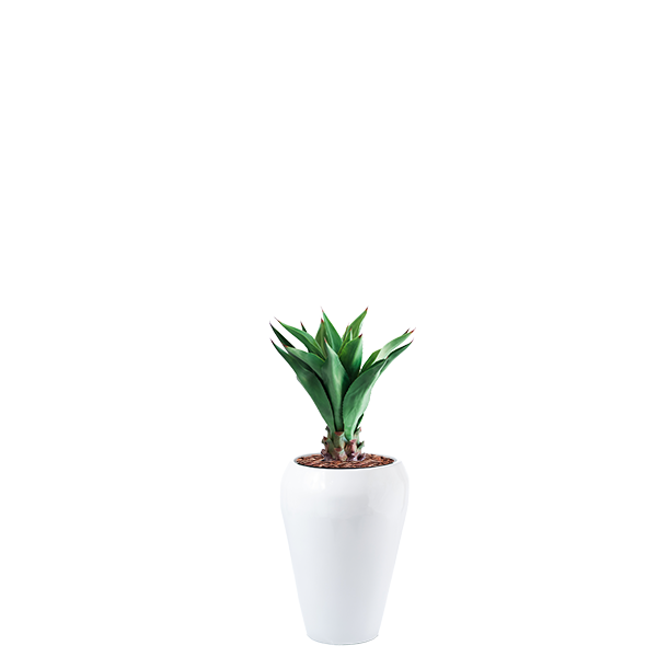 Round tapered Dahla Fiberglass pot planted with faux Middle Agave 90cm plant