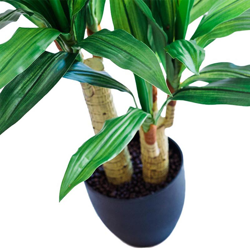 Dracaena 80cm - ARTIFICIAL PLANTS