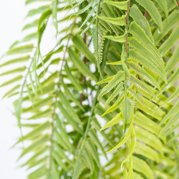 Close up of Artificial hanging Sword Fern 120cm Green