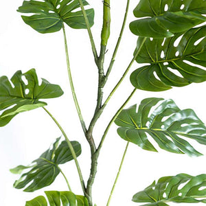 Hanging Monstera Vine 180cm - ARTIFICIAL PLANTS
