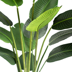 Bird Of Paradise Tree 180cm - ARTIFICIAL PLANTS
