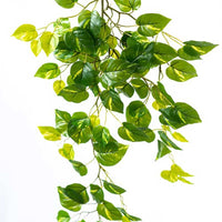 Hanging Epipremnum Bush 108cm - ARTIFICIAL PLANTS