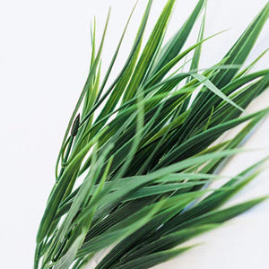 Grass Bush 7 Head 38cm - ARTIFICIAL PLANTS