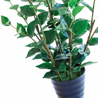 Green Joy 80cm - ARTIFICIAL PLANTS