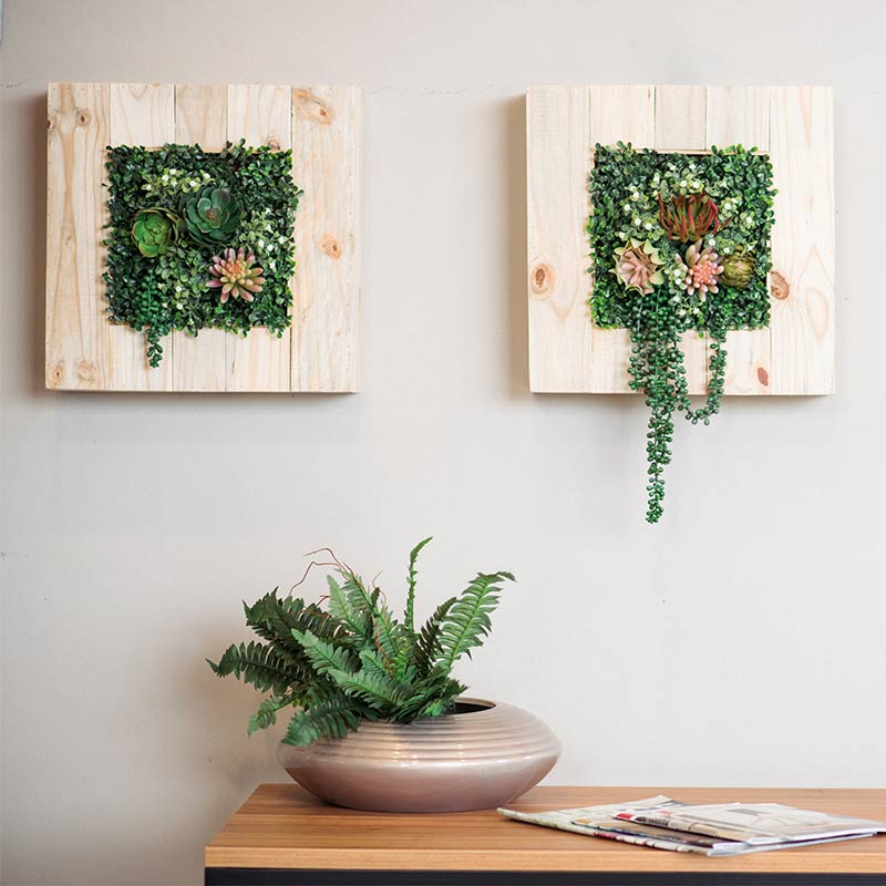Wall Box Timber with Succulents - ACCESSORIES